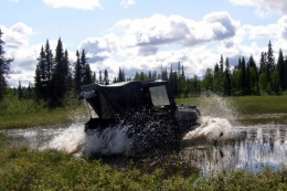 McCarthy-petersville-rally-2011-0201