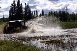 McCarthy-petersville-rally-2011-0221