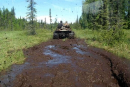 McCarthy-petersville-rally-2011-0561
