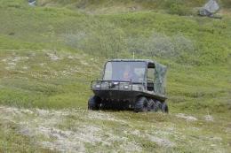 Gojenola-2003-51